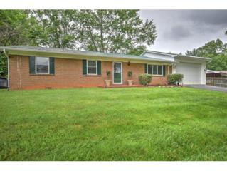 246 Douglas Shed Road, Gray, TN 37615 (MLS #392183) :: Conservus Real Estate Group