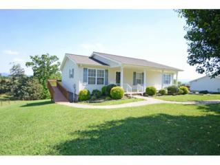 665 Haney Hill Rd., Greeneville, TN 37743 (MLS #392192) :: Conservus Real Estate Group