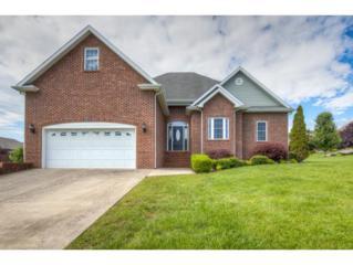 20 Amesbury, Gray, TN 37615 (MLS #392194) :: Conservus Real Estate Group