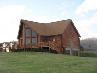 581 Way Cross, Church Hill, TN 37642 (MLS #392196) :: Conservus Real Estate Group