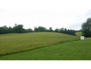 Par. 10 Carters Valley Rd., Church Hill, TN 37642 (MLS #392198) :: Conservus Real Estate Group
