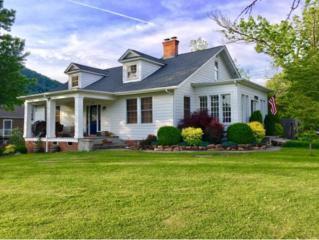 217 Shawnee Ave W, Big Stone Gap, VA 24219 (MLS #392200) :: Conservus Real Estate Group