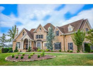 1015 Treetop Drive, Kingsport, TN 37664 (MLS #389606) :: Conservus Real Estate Group