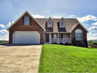 54 Bend Court, Gray, TN 37615 (MLS #391681) :: Conservus Real Estate Group