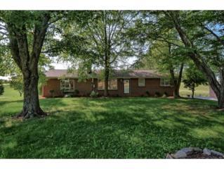 204 Sulphur Springs Rd, Gray, TN 37615 (MLS #391831) :: Conservus Real Estate Group