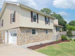 231 Kings Grant Rd., Kingsport, TN 37663 (MLS #392019) :: Conservus Real Estate Group