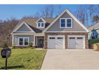 258 Old Island Trail, Kingsport, TN 37664 (MLS #380713) :: Conservus Real Estate Group