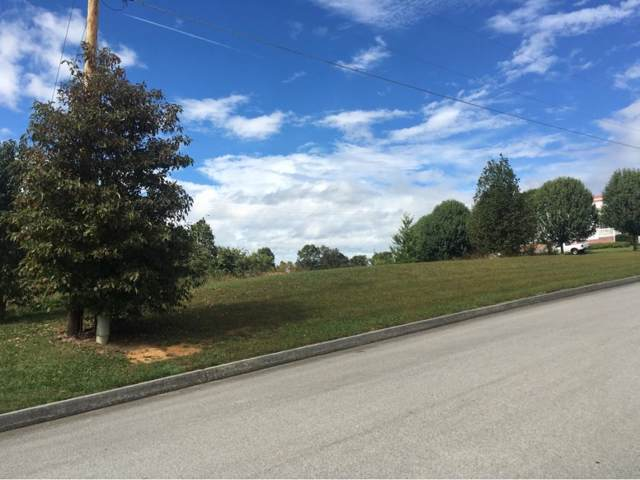 174 Sand Ridge Circle, Jonesborough, TN 37659 (MLS #414961) :: Bridge Pointe Real Estate