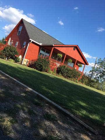 232 Lake Cove Road, Mooresburg, TN 37811 (MLS #9901685) :: Conservus Real Estate Group