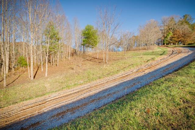 151 Scaly Bark Ridge Rd, Roan Mountain, TN 37687 (MLS #9901704) :: Bridge Pointe Real Estate