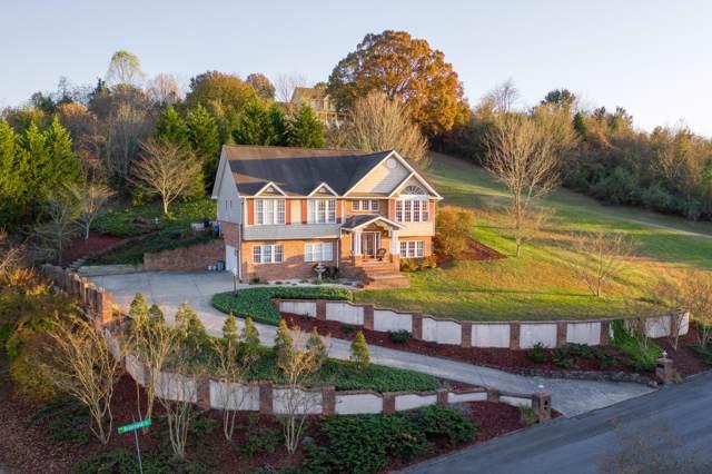 201 Briarfield Drive, Kingsport, TN 37660 (MLS #9901955) :: Conservus Real Estate Group