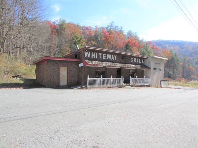 7317 Highway 19-E, Roan Mountain, TN 37687 (MLS #9901976) :: Conservus Real Estate Group