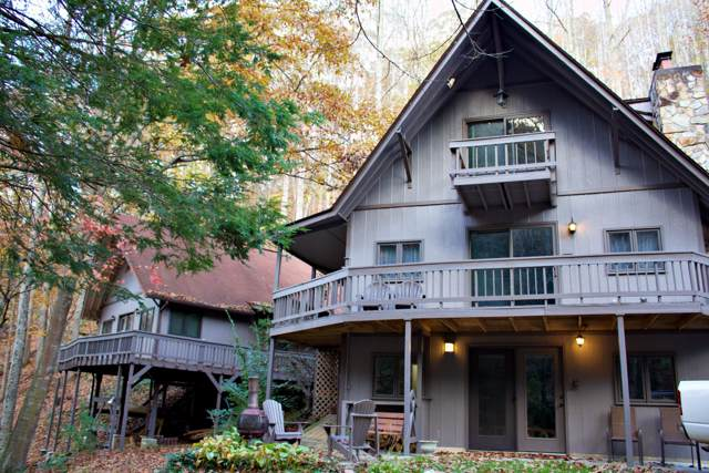 805 Tiger Creek Road, Roan Mountain, TN 37687 (MLS #9902030) :: Conservus Real Estate Group
