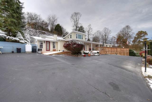166 Lonesome Dove Lane, Elizabethton, TN 37643 (MLS #9902082) :: Bridge Pointe Real Estate