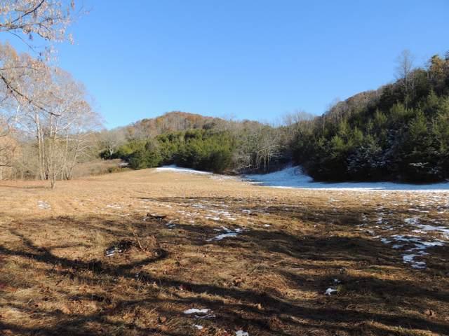 00 Stoney Fork Road, Sneedville, TN 37869 (MLS #9902093) :: Conservus Real Estate Group