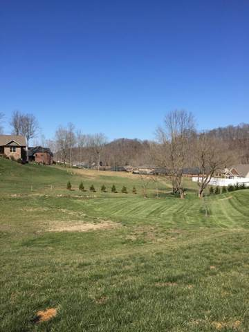 2 Free Hill Road, Gray, TN 37615 (MLS #9902114) :: Conservus Real Estate Group
