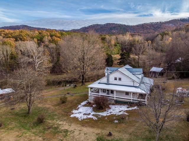 4111 Oak Hills Rd Road, Parrotsville, TN 37843 (MLS #9902165) :: Highlands Realty, Inc.