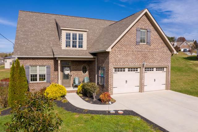 68 Creek View Court, Gray, TN 37615 (MLS #9902184) :: The Baxter-Milhorn Group