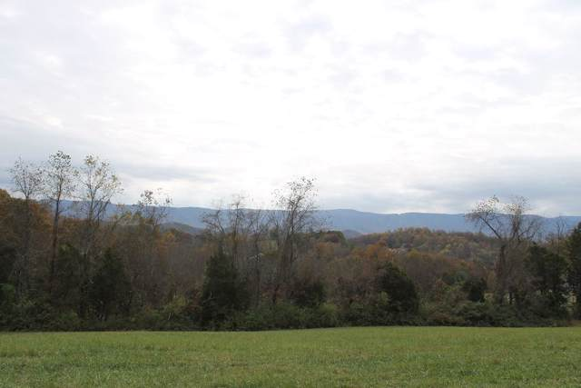 TBD Bristol Caverns Highway, Bristol, TN 37620 (MLS #9902201) :: The Baxter-Milhorn Group