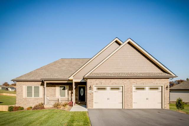 1341 Peaceful Drive, Jonesborough, TN 37659 (MLS #9902258) :: Bridge Pointe Real Estate