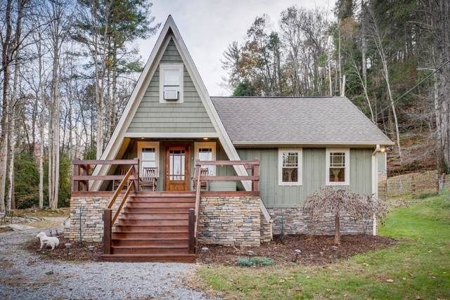 301 Cabin Orchard Road, Erwin, TN 37650 (MLS #9902295) :: Bridge Pointe Real Estate