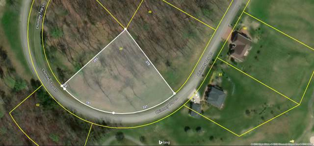 00 Chimney Top Lane, Chuckey, TN 37641 (MLS #9902304) :: Conservus Real Estate Group