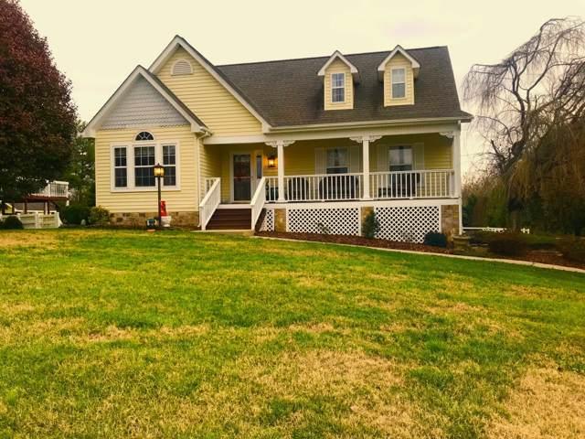 119 Lindsay Lane, Gray, TN 37615 (MLS #9902328) :: Conservus Real Estate Group