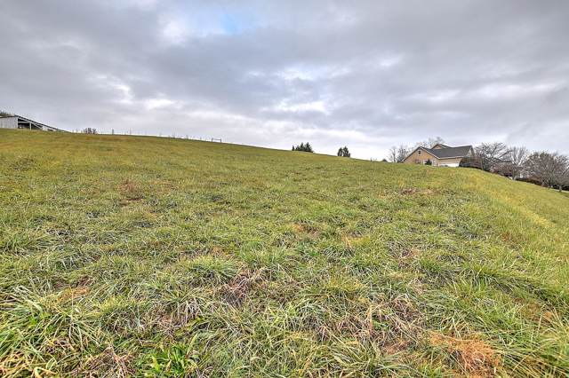 Lot 15 Laurel Ridge Drive Drive, Jonesborough, TN 37659 (MLS #9902339) :: Conservus Real Estate Group