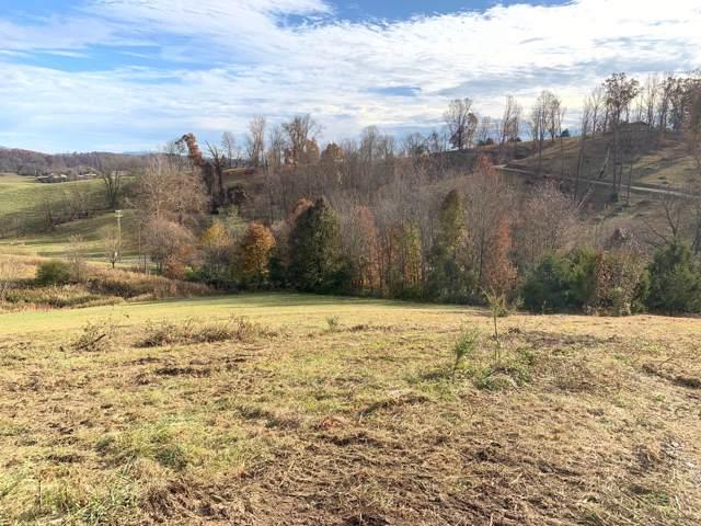 Tbd Olde Oaks Dr Lot 44 Drive, Johnson City, TN 37615 (MLS #9902365) :: Conservus Real Estate Group
