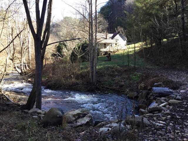 118 Stone Pl Road, Flag Pond, TN 37657 (MLS #9902453) :: Bridge Pointe Real Estate