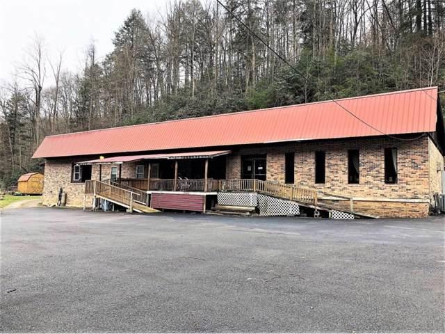 22618 Dickenson Hwy Highway, Haysi, VA 24256 (MLS #9902524) :: Highlands Realty, Inc.