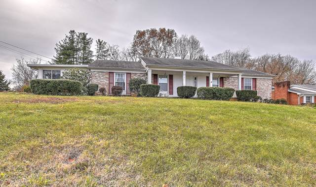 224 Upland Drive, Kingsport, TN 37663 (MLS #9902556) :: Conservus Real Estate Group