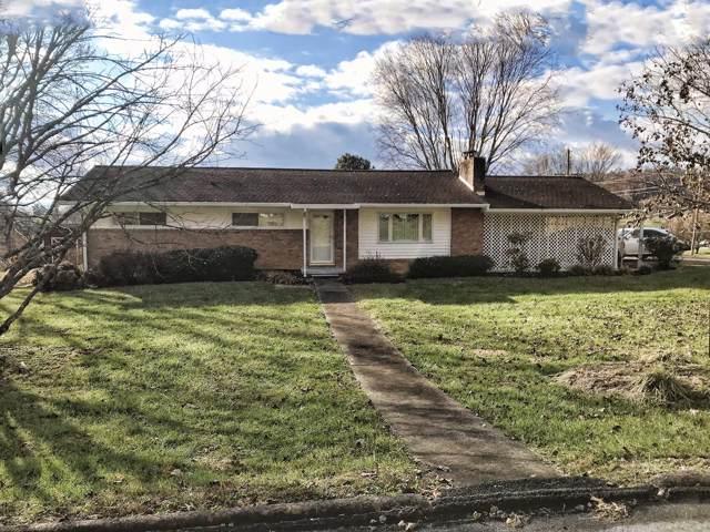 308 Green Lane, Blountville, TN 37617 (MLS #9902594) :: Bridge Pointe Real Estate
