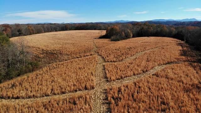 1395 Highway 160, Bybee, TN 37713 (MLS #9902599) :: Highlands Realty, Inc.