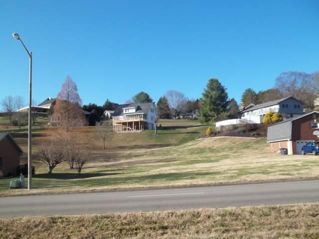 000 Lewis Lane, Kingsport, TN 37660 (MLS #9902672) :: Conservus Real Estate Group