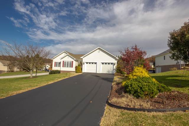 17 Stacy Lane, Jonesborough, TN 37659 (MLS #9902702) :: Conservus Real Estate Group