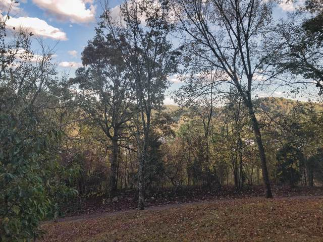 Address Not Published, Kingsport, TN 37664 (MLS #9902703) :: Highlands Realty, Inc.