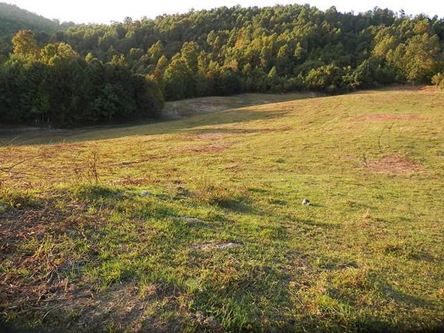 0003 Dingus Hollow Road, Fort Blackmore, VA 24250 (MLS #9902793) :: Conservus Real Estate Group