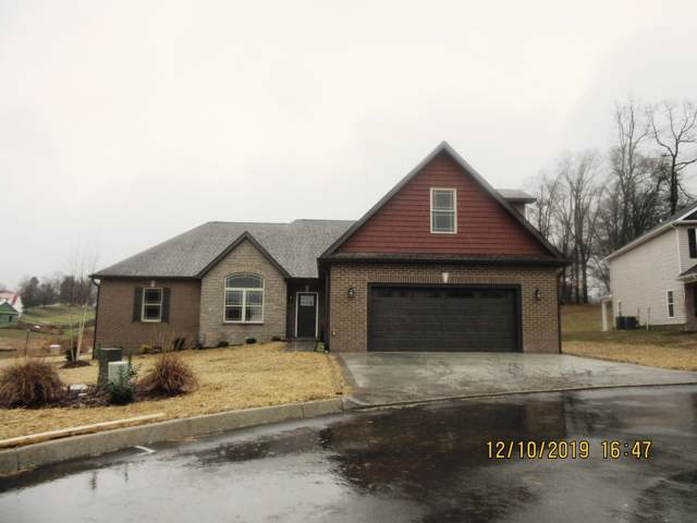 22 Planted Stone, Jonesborough, TN 37659 (MLS #9902825) :: Conservus Real Estate Group