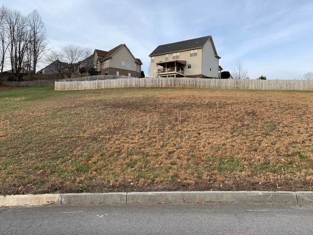 142 Cameron Court, Gray, TN 37615 (MLS #9903111) :: Conservus Real Estate Group