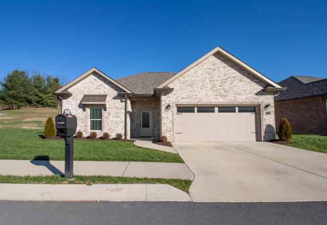 67 Ripple Falls, Gray, TN 37615 (MLS #9903121) :: Conservus Real Estate Group