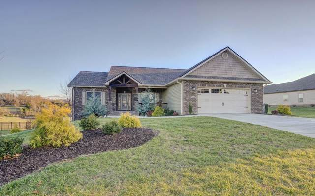 1121 Peaceful Drive, Jonesborough, TN 37659 (MLS #9903155) :: Conservus Real Estate Group