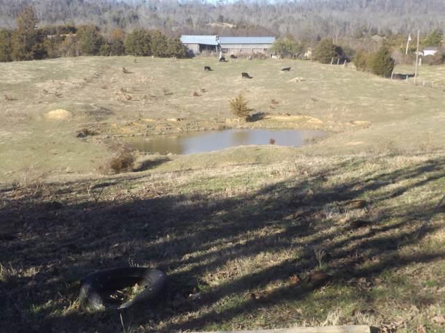 635 Hammitt Rd, Bulls Gap, TN 37711 (MLS #9903259) :: Highlands Realty, Inc.
