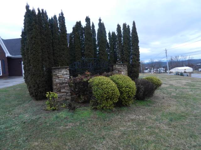1876 Muddy Creek Road, Blountville, TN 37617 (MLS #9903568) :: Bridge Pointe Real Estate