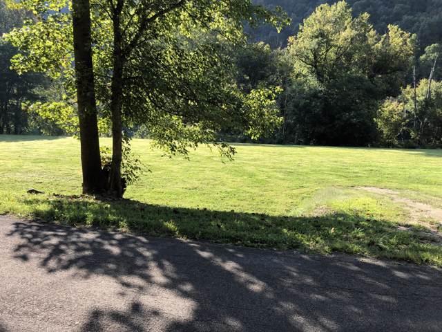 Lot 2 Anglers Way Road, Duffield, VA 24244 (MLS #9903577) :: Conservus Real Estate Group