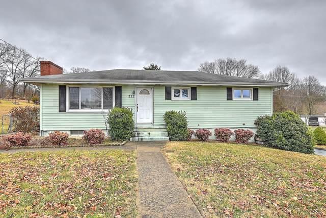 222 Florence Drive, Blountville, TN 37617 (MLS #9903630) :: Bridge Pointe Real Estate