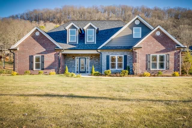 3901 Leaf Point, Kingsport, TN 37663 (MLS #9903647) :: Conservus Real Estate Group