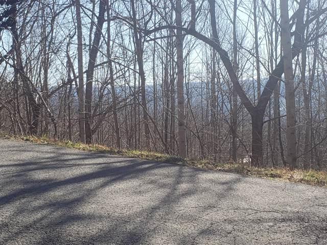 Lot 679 Chimney Rock Road, New Tazewell, TN 37825 (MLS #9903674) :: Conservus Real Estate Group