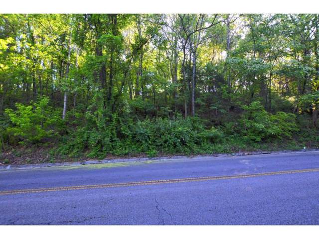 Lot 2 Avondale Lane, Bristol, VA 24201 (MLS #9903714) :: Conservus Real Estate Group