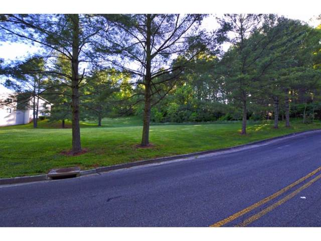Lot 1 Avondale Lane, Bristol, VA 24201 (MLS #9903716) :: Conservus Real Estate Group